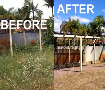Yard Clean Ups in Sydney