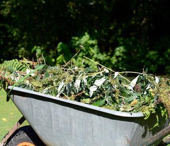 Green Waste Disposal