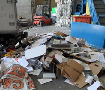 Paper & Cardboard Removal